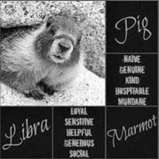 Marmot Libra